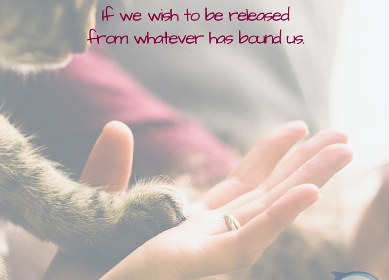 """""""We must be willing to be uncomfortable for a while if we wish to be released from whatever has bound us."""" - Don Riso"""